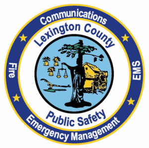 LCPS_logo_patch